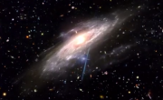 Funny Or Die's 'Creationist Cosmos':  God Created Everything Except Gay People